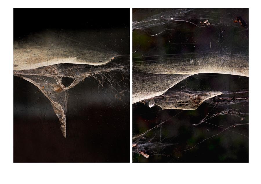 Helga Partikel, foto.kunst.kultur, Diptychon