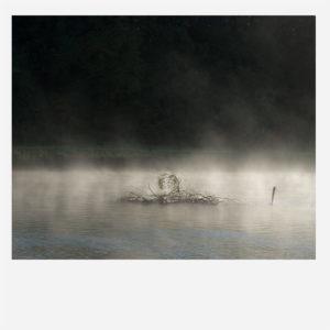 Helga Partikel, foto.kunst.kultur, Faszination Natur
